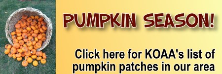 Pumpkin Patches in and around the Hudson Valley