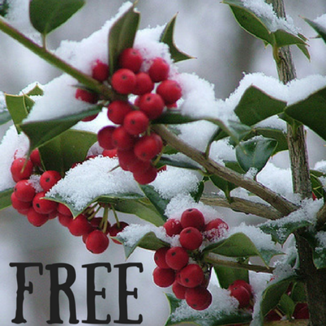 Master Guide to December Holiday Fun in the Hudson Valley